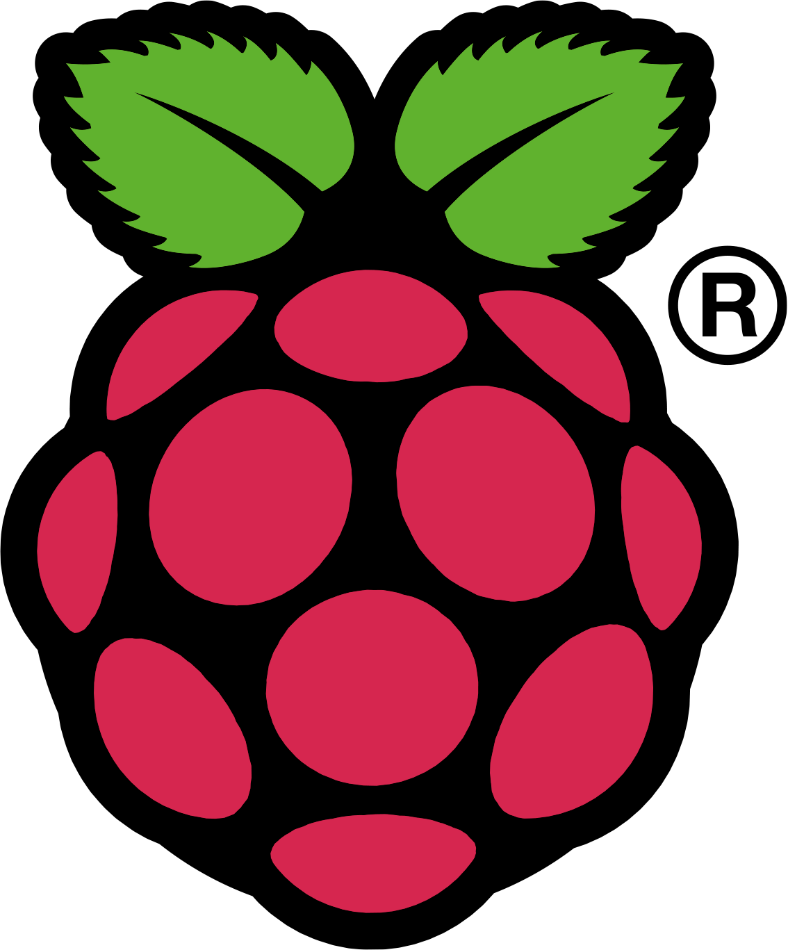 Raspi_Colour_R